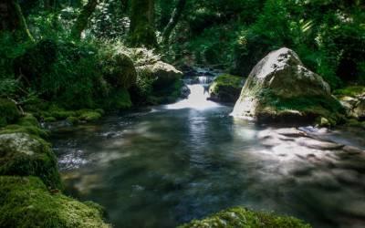 Κεφαλοπόταμος - Ένα μαγευτικό μέρος έξω από τα Τρίκαλα (Φωτογραφίες)